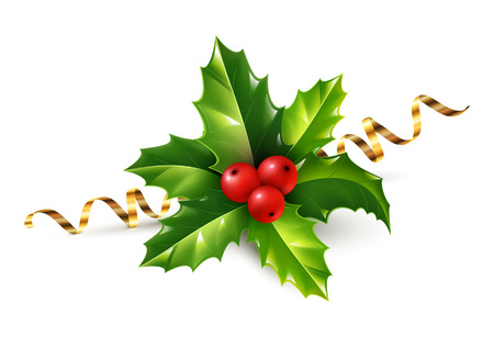 spiked: Vector realistic holly Christmas ornament. Holly green leaves and red berries with golden serpentine ribbon isolated on white background. Illustration