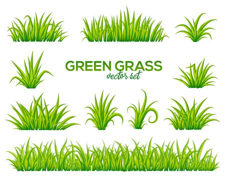 Ciuffi di vettore di erba impostato isolato su sfondo bianco
