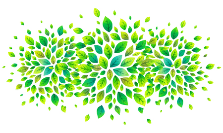 tree isolated: Green fresh leaves vector banner background
