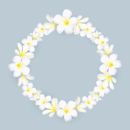 White frangipani flowers vector round frame on gray background