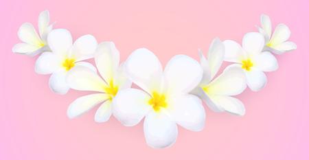 White frangipani flowers vector border on blue background.