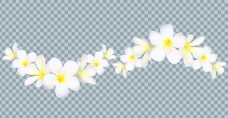 Bordure de fleurs de Bali vecteur sur fond de grille de transparence