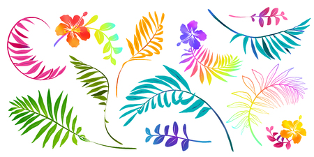 Vivid colors tropical leaves and flowers vector set isolated on white background.