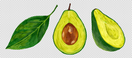 Oil painting style vector half-cut fresh avocado with green leaf isolated on transparency grid imitation background.