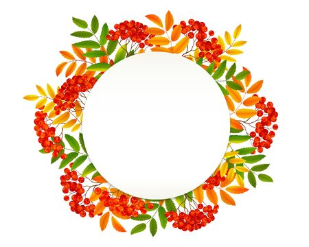 White paper circle in red rowan berries and orange autumn leaves frame, vector realistic fall banner background