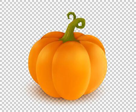 Vector realistic orange pumpkin in cartoon style on transparency grid imitation background