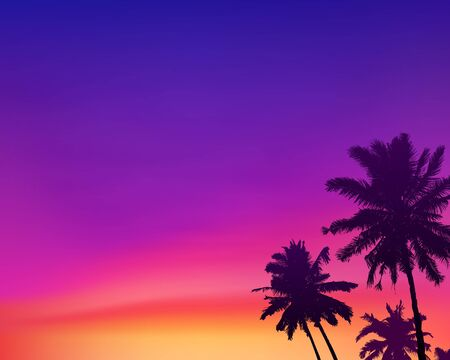 Dark palm trees silhouettes on violet and pink colors sunset sky background, vector illustration Illustration