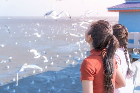 Daylight and copy space. Asian women standing at the sea to see the herd of seagull fly. That migrated in the summer of Thailand. Banco de Imagens