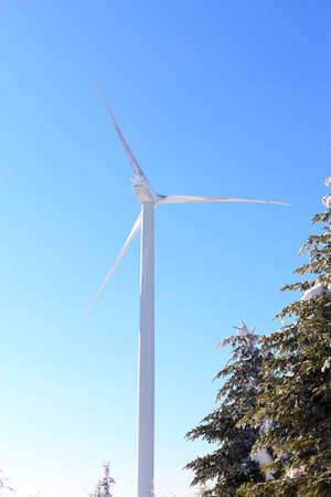 windless: wind park in winter