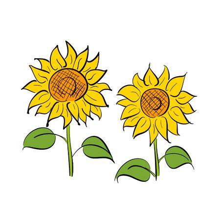Sunflower Flower Pen Illustration Vector