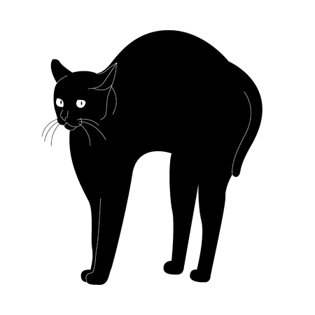 vector illustration:  black cat arch its back on the white background