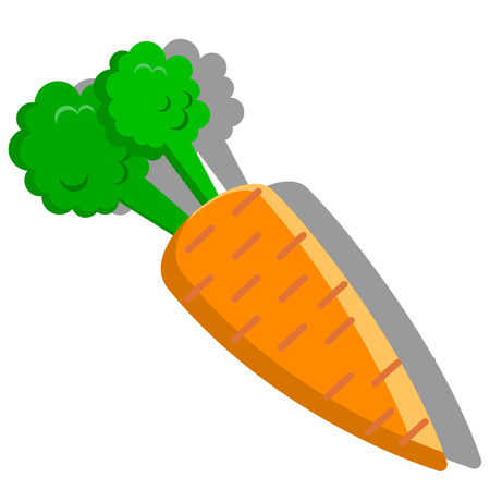 vector illustration - a carrot on the white background