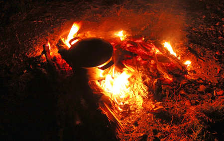 The bright orange flame of the fire. Firewood burns at night in the woods. High quality photo