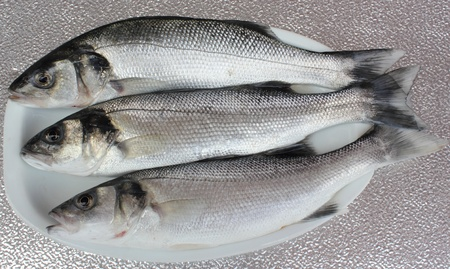 freshly rod caught sea bass,a delicacy of the British Isles Stock Photo - 17147778