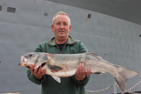 Large rod caught Seabass photo