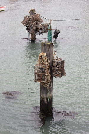 crab pots: lobster and crab pots hanging on posts in portsmouth harbour