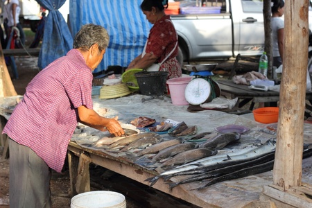 Thailand fish market, khao lak , thailand 11th april 2012