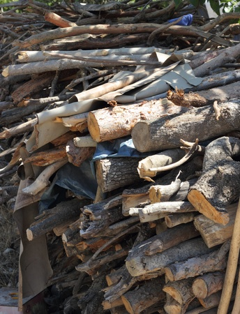 Stacked timber for fencing and fire wood Stock Photo - 22038949