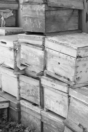 Old wooden boxes stacked high photo