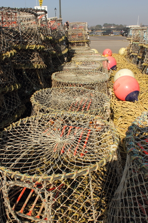 quayside: Lobster and crab pots on the quayside
