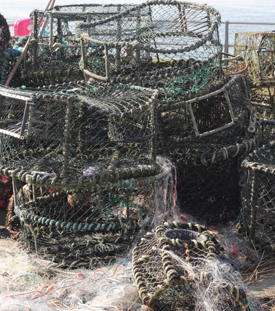 crab pots: Lobster and crab pots on the quayside