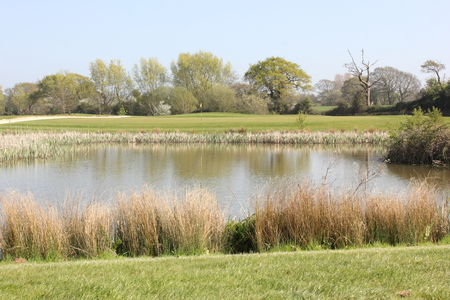par: A scenic par three golf hole with a lake in front Stock Photo