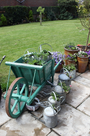 planters: An english garden with a vintage wheel barrow and watering cans being used as planters for flowers