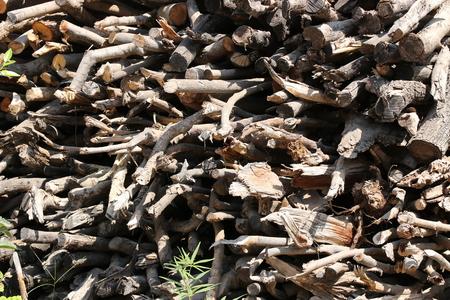 stockpile: A stockpile of small kindling fire wood Stock Photo
