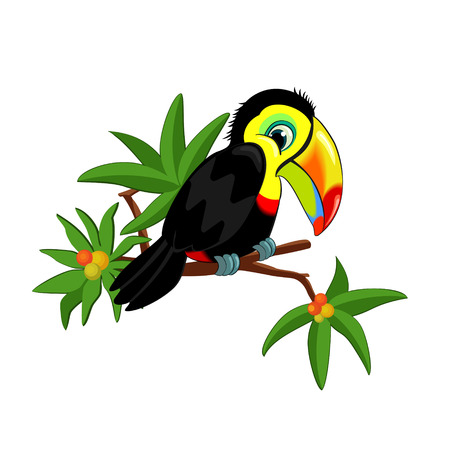 Funny Toucan on a branch with leaves and tropical fruits isolated on white background Illustration