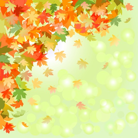 Autumn falling leaves on a background of sunlight