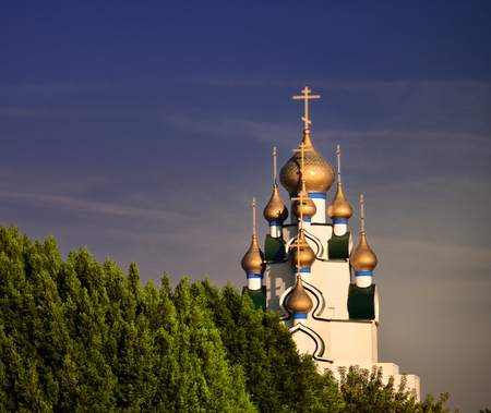 orthodox church dome at the end of the trees