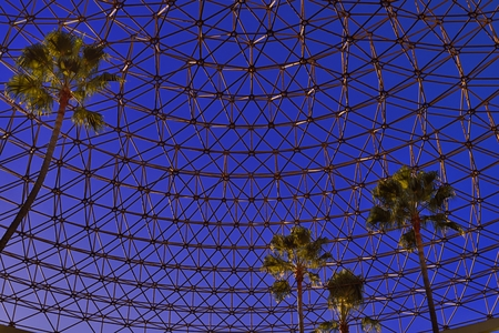 palm trees inside a geodesic dome