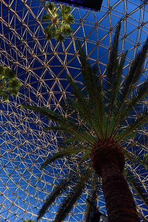 Palm tree under a geodesic dome in Los Angeles Editorial