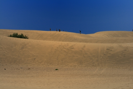 people walking by the dunes Stock Photo
