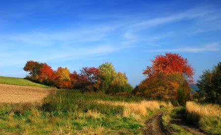 colour autumn landscape in Bohemia, Czech