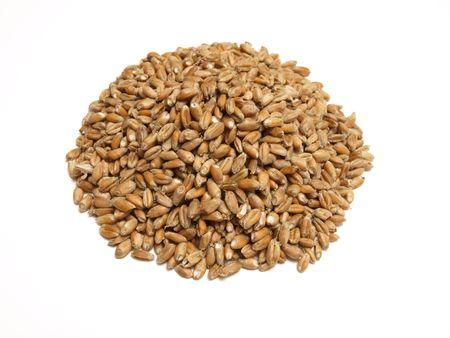 bread         Stock Photo - 6871606