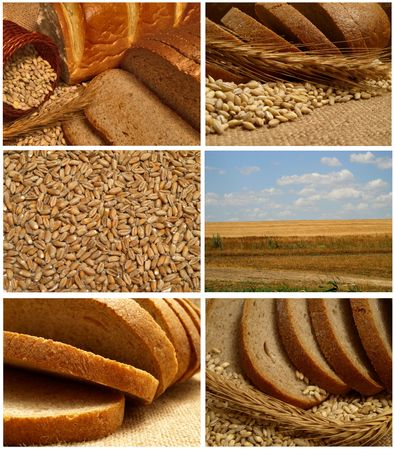 bread Stock Photo - 7712437