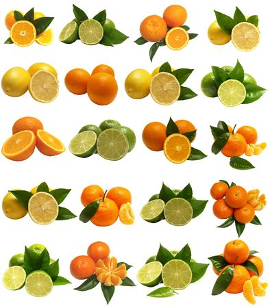 Citrus for all tastes Stock Photo