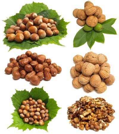 wood nut photo