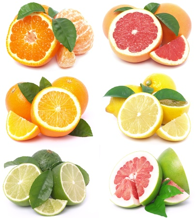 lime slice: Citrus fruits Stock Photo