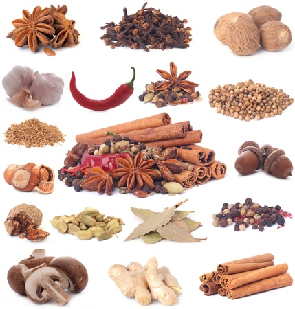 Spices collection photo