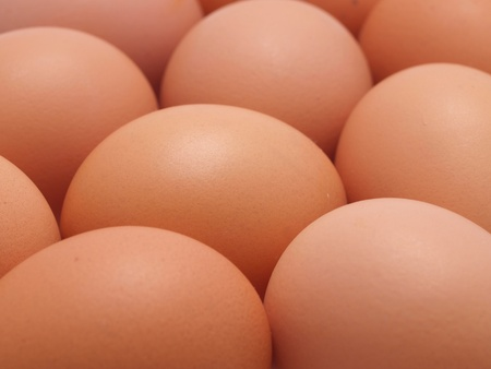 Eggs texture Stock Photo - 18211363