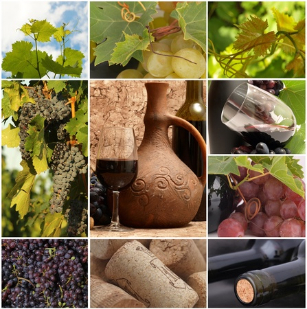 Excellent Georgian wine Stock Photo