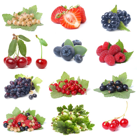 berry fruit: Berries collection