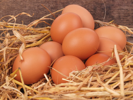Fresh eggs Stock Photo - 24324003