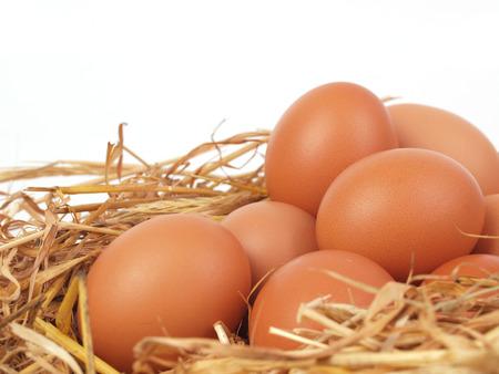 Fresh eggs       Stock Photo - 24324004