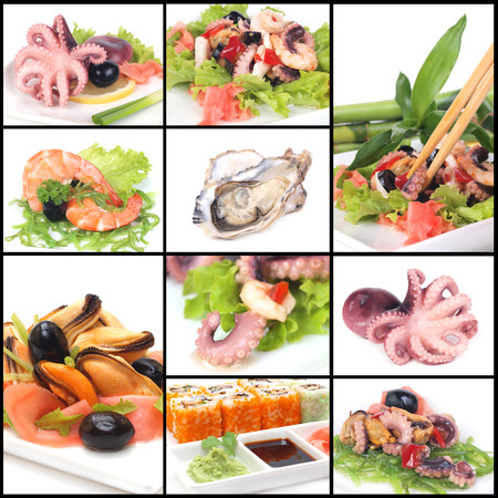 Refined seafood dishes photo