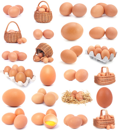 Eggs collection Stock Photo