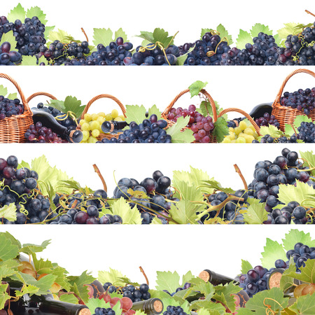 berryes: Wine grapes