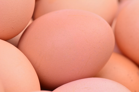 Fresh eggs Stock Photo - 27194077